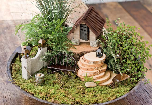 fairy gardens to delight you homestead greenhouse. Black Bedroom Furniture Sets. Home Design Ideas